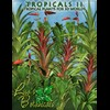 Lisa's Botanicals - Tropicals II