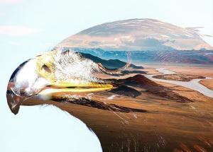 animated-parallax-double-exposure-photoshop-33