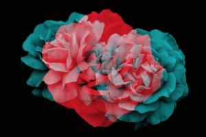 elegant-floral-brushes-for-photoshop-42