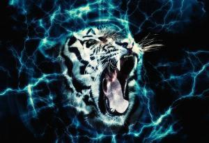 energy-animation-photoshop-action-22