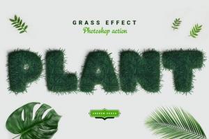 grass-photoshop-action-44