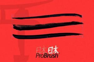 japan-probrush-32