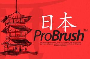 japan-probrush-4