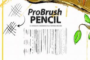 pencil-probrush-22