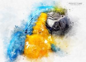 perfectum-3-watercolor-master-photoshop-action12