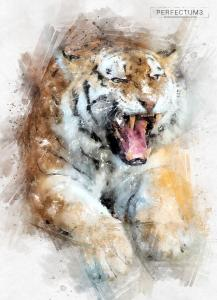 perfectum-3-watercolor-master-photoshop-action63