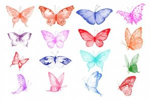 photoshop-brush-watercolor-butterflies-abr-13