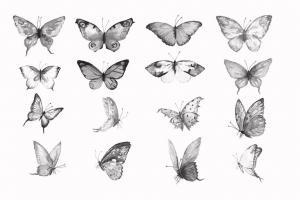 photoshop-brush-watercolor-butterflies-abr-22