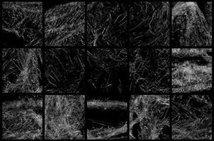 plastic-photoshop-stamp-brushes-01-32