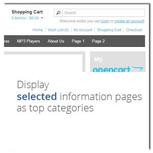selected_information_pages_and_footer_links_in_top_menu_many_combinations-022