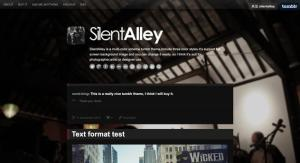 silent-alley-responsive-multi-color-tumblr-theme-22