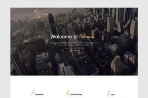 silvana-agency-unbounce-landing-page