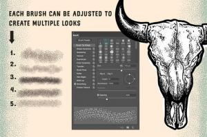 stipple-brush-set-for-photoshop-and-illustrator-33